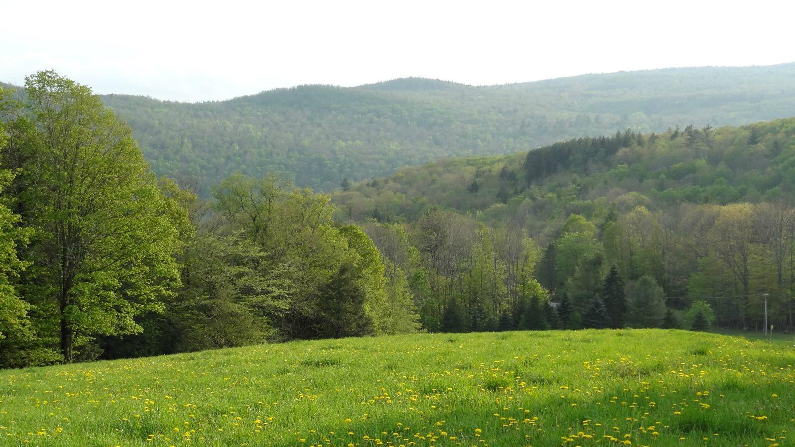 vermont-scenic-route-100