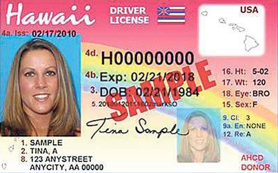 hawaii driver license