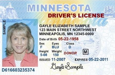 minnesota driver license