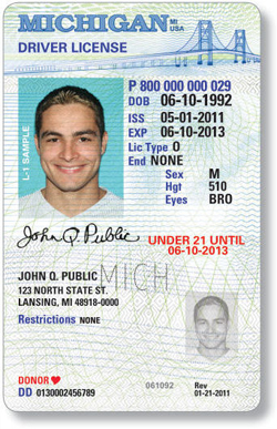 michigan driver license