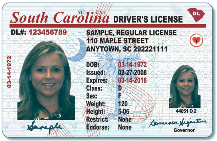 south carolina driver license