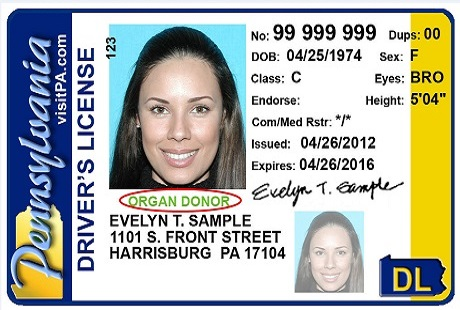 pennsylvania driver license