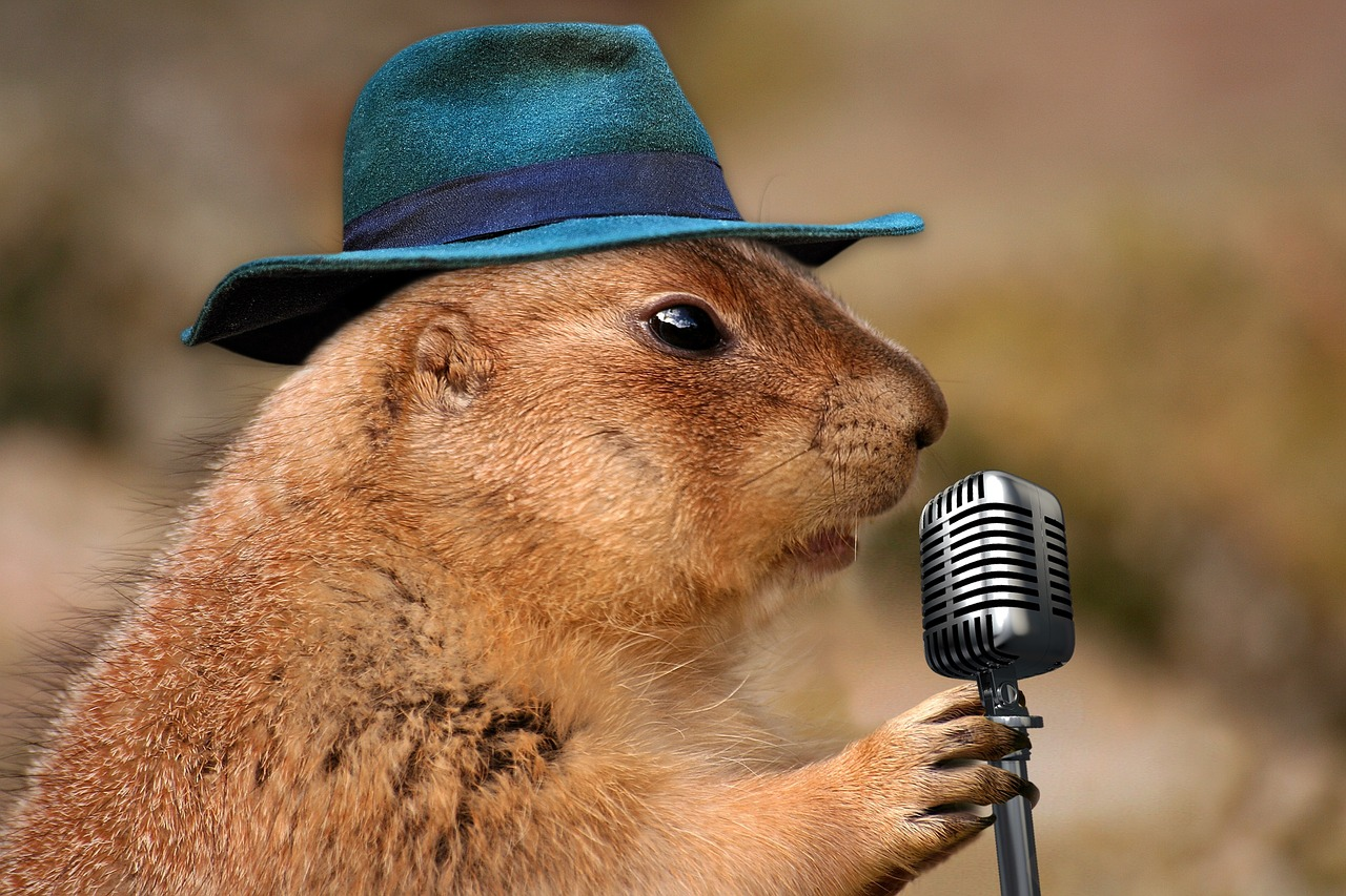 karaoke-contest