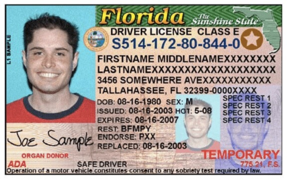 Florida Driver License Sample