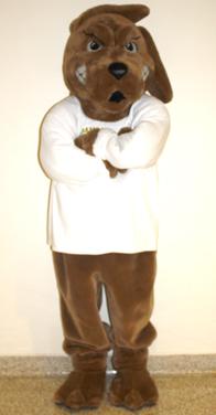 Pennsylvania mascots