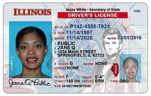 Illinois Driver License Example