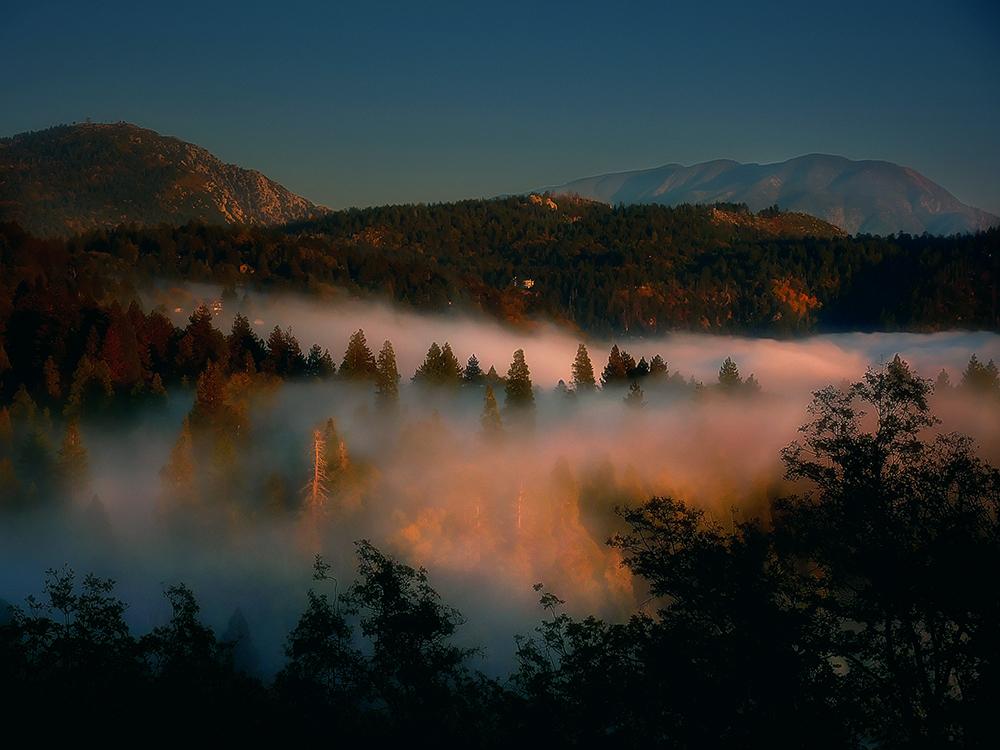 san bernardino national forest